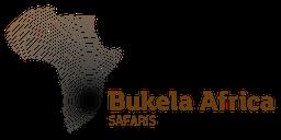 bukela-africa-2015test-logo-colour-retina